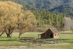Granaio dagli alberi scenici nell'Idaho Immagine Stock