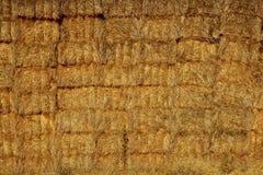 Granaio del cereale con la pila quadrata di figura sulle colonne Fotografia Stock