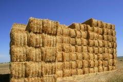 Granaio del cereale con la pila quadrata di figura sulle colonne Fotografie Stock Libere da Diritti