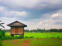 Granaio del riso Fotografia Stock