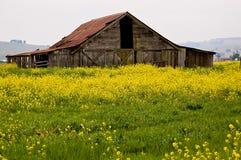 Granaio della valle di Sonoma Fotografia Stock Libera da Diritti