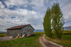 Granaio di agricoltura Fotografia Stock Libera da Diritti