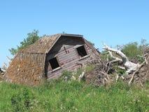 Granaio di legno crollato dell'azienda agricola isolato Immagine Stock Libera da Diritti