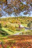 Granaio di legno nel paesaggio del fogliame di caduta nella campagna del Vermont Immagini Stock Libere da Diritti