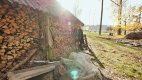 Granaio di legno nel villaggio al sole La parete del granaio è riempita di mucchi di legna da ardere tagliata Autumn Time stock footage