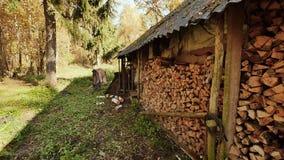 Granaio di legno nel villaggio La parete del granaio è riempita di mucchi di legna da ardere tagliata Autumn Time Fucilazione den archivi video
