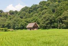 Granaio di stile di Gassho nel villaggio di Ogimachi, Giappone Fotografia Stock Libera da Diritti