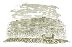 Granaio e campo dell'azienda agricola dell'intaglio in legno Immagine Stock