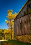 Granaio e colore di autunno nella contea di York rurale, Pensilvania immagini stock