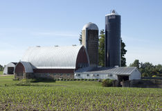Granaio e due silos immagini stock