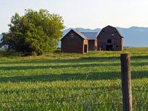 Granaio ed edifici attigui #2 fotografia stock
