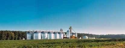 Granaio moderno, complesso dell'essiccazione dei cereali, grano commerciale o silos del seme Immagine Stock Libera da Diritti
