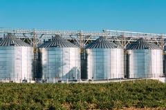 Granaio moderno, complesso dell'essiccazione dei cereali, grano commerciale o silos del seme Immagine Stock