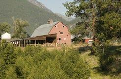 Granaio in montagne del Montana Fotografie Stock Libere da Diritti