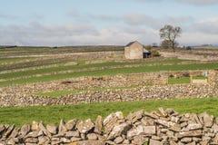 Granaio nei campi, paesaggio fotografia stock libera da diritti