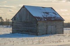 Granaio pionieristico della cabina di ceppo in Ontario orientale nell'inverno Immagine Stock Libera da Diritti