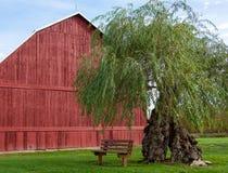 Granaio rosso con il banco libero Fotografia Stock Libera da Diritti