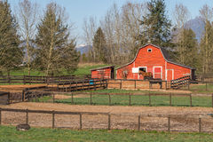 Granaio rosso con il maiale della pancia di vaso e dei cavalli Fotografia Stock Libera da Diritti