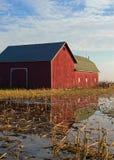 Granaio rosso con la riflessione Fotografie Stock