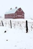 Granaio rosso nella tempesta di inverno Fotografie Stock Libere da Diritti