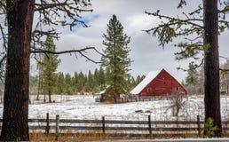 Granaio rosso nelle foreste Fotografia Stock