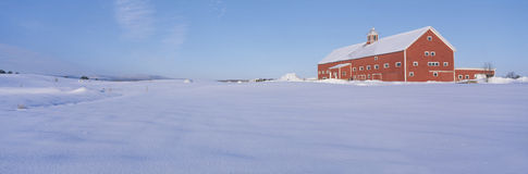 Granaio rosso in neve, Immagine Stock