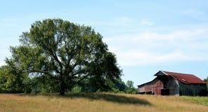 Granaio rurale nel Tennessee fotografia stock