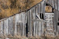 Granaio rustico degli agricoltori vecchio con l'albero di salice Fotografie Stock Libere da Diritti
