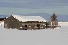 Granaio rustico del ceppo dell'Idaho Fotografie Stock