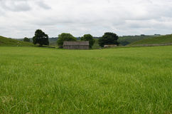 Granaio rustico nel campo, Wetton, Staffordshire, Inghilterra Immagini Stock