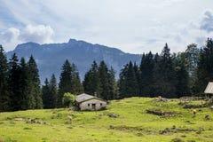 Granaio sul prato nelle alpi europee Fotografia Stock Libera da Diritti