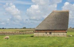 Granaio sull'isola di Texel Fotografia Stock Libera da Diritti