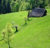 Granaio tradizionale su un bello Spring Hill Fotografia Stock