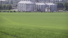 Granaries near the green field in spring stock footage