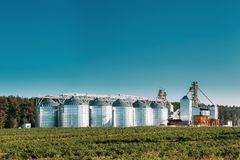 Granary, Grain-drying Complex, Commercial Grain Or Seed Silos In. Sunny Summer Rural Landscape. Corn Dryer Silos, Inland Grain Terminal, Grain Elevators royalty free stock images