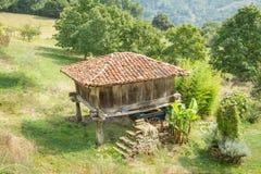 Granaryen av Asturias lyftte vid pelare och bekant som Royaltyfri Fotografi