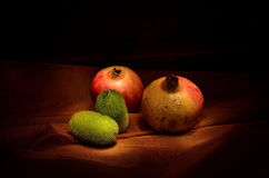 Granatäpfel und grüne Kürbisse Stockfotos