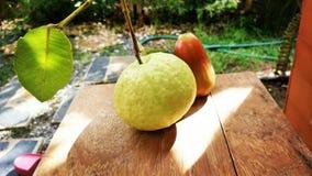 Granatäpple och rosa äpplefrukt Royaltyfri Foto