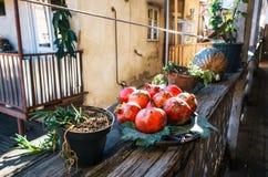 Granatäpple på en platta på terrassen royaltyfri bild