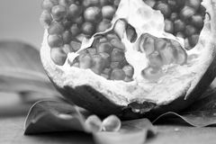 Granatapfel 4, neues Jahr. Stockbilder