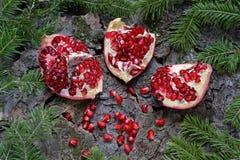 Granatapfel auf Baumrinde Stockfotografie