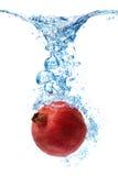 Granatapfel, der im Wasser spritzt Lizenzfreie Stockfotos
