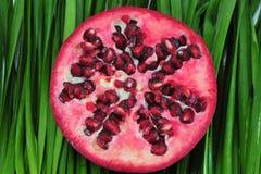 Granatapfel-Frucht Lizenzfreies Stockbild