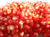 Granatapfel glühend Lizenzfreies Stockbild