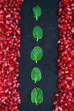 Granatapfel mit Minze auf einem schwarzen Hintergrund Lizenzfreie Stockbilder