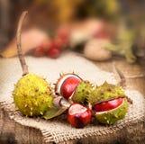 Granatapfel, Trauben und Kastanie auf Holz im Oktober Stockfoto