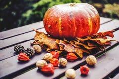 Granatapfel, Trauben und Kastanie auf Holz im Oktober lizenzfreies stockfoto