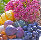 Granatapfel, Trauben und Kastanie auf Holz im Oktober Lizenzfreie Stockbilder