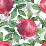 Granatapfel und Blätter Stockfotografie