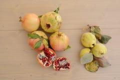 Granatapfel und Quitte Lizenzfreies Stockfoto